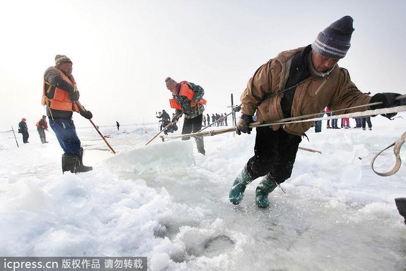 哈尔滨国际冰雪节将近 上千人松花江上凿冰
