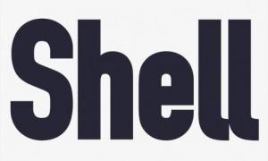 shell的过去式是什么? shell的用法和例句