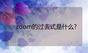 zoom的过去式是什么?zoom的用法和例句