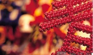实用口语:如何用英语介绍中国春节?