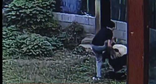 南昌男子跳入熊猫馆和大熊猫扭打 分分钟被按倒
